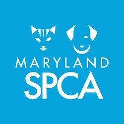 SmartLogic Donates to Maryland SPCA