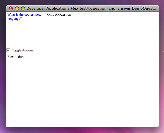 DemoQuestionAnswer Screenshot with Checkbox selected